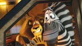 Madagascar 4 déjà confirmé par DreamWorks !