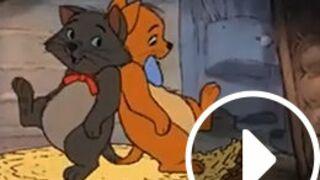 Les héros Disney tous fans de Pharell Williams !