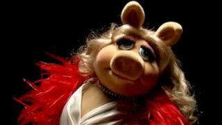 Buzz : Le Muppet Show reprend Queen (VIDEO)