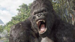 Bande-annonce : King Kong ce soir sur TF1