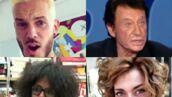 Pokora, Sheryfa Luna, Hallyday... Les coiffures improbables des people (PHOTOS)