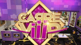 Carré ViiiP : Marjolaine veut quitter l'émission ! (VIDEO)