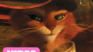 Le Chat potté : Les 7 premières minutes du film ! (VIDEO)