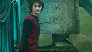 Harry Potter, le magicien des audiences
