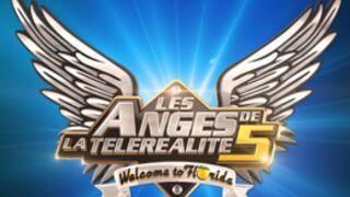 Les Anges de la télé-réalité :  Début de la saison 5 sur NRJ 12 !
