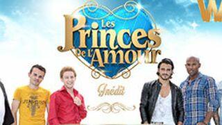 Les princes de l'amour (W9) : la revanche des garçons !