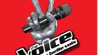 The Voice 3 : découvrez quelle chanteuse (déjà connue) a passé les castings...