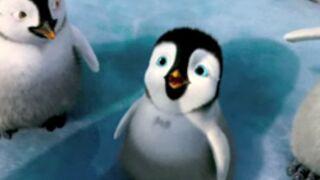 Happy Feet 2 : Une nouvelle bande-annonce ! (VIDEO)