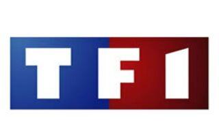 En 2011, TF1 a réalisé 99 des 100 meilleures audiences