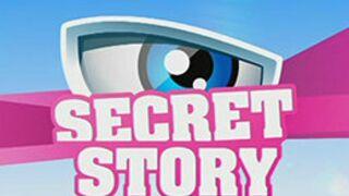 Secret Story saison 8 (TF1) : début le...