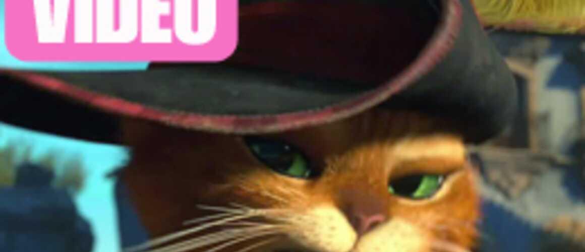 Le chat potté telechargement gratuit