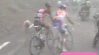 Des moutons s'incrustent au Tour de France ! (VIDEO)