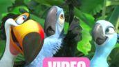 Nouvelles images de Rio, des créateurs de L'Age de Glace (VIDEO)