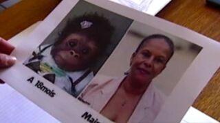 Une candidate du FN compare Christiane Taubira à un singe (VIDEO)