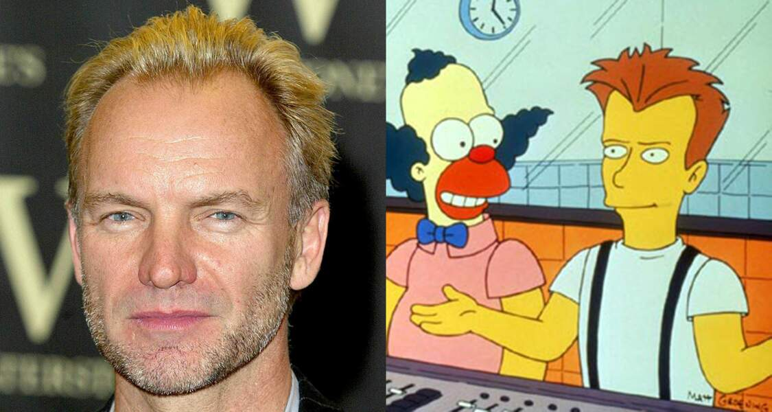 Le chanteur Sting
