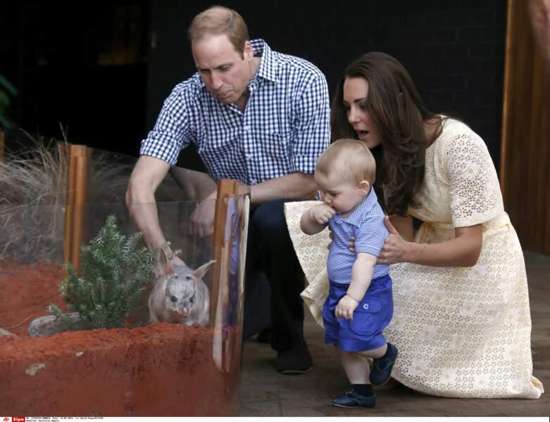 Voyage officiel en Australie, la famille visite le zoo de Sydney