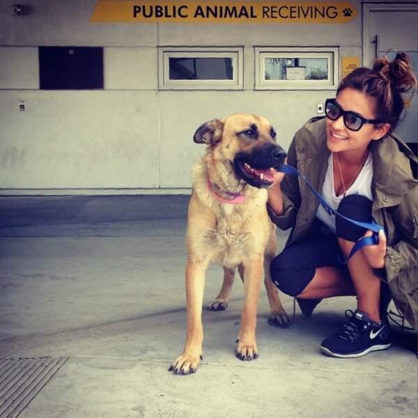 On applaudit Shay Mitchell qui a adopté un chien abandonné. S'il savait comme il est bien tombé !