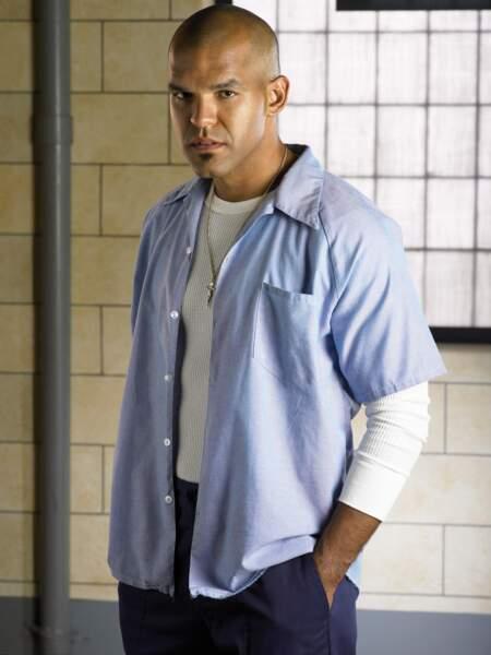 Amaury Nolasco jouait le rôle de Fernando Sucre, qui partageait la cellule de Michael Scofield