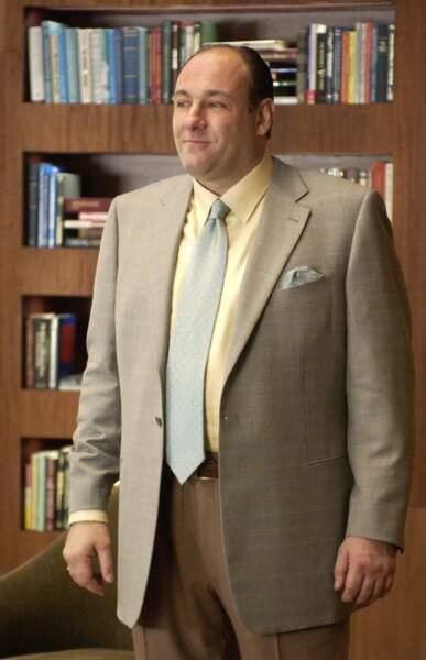 James Gandolfini (Les Soprano) est décédé subitement le 19 juin 2013.