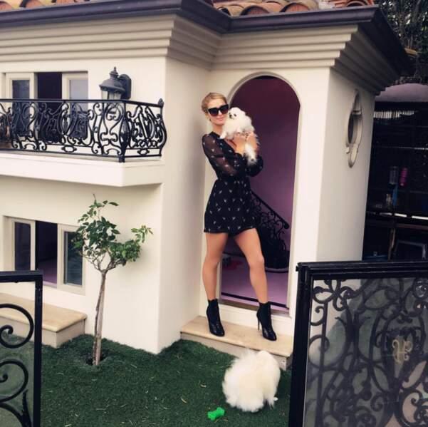 Attention : trop d'amour peut ravager le cerveau. La preuve avec Paris Hilton et la maison pour ses chiens.