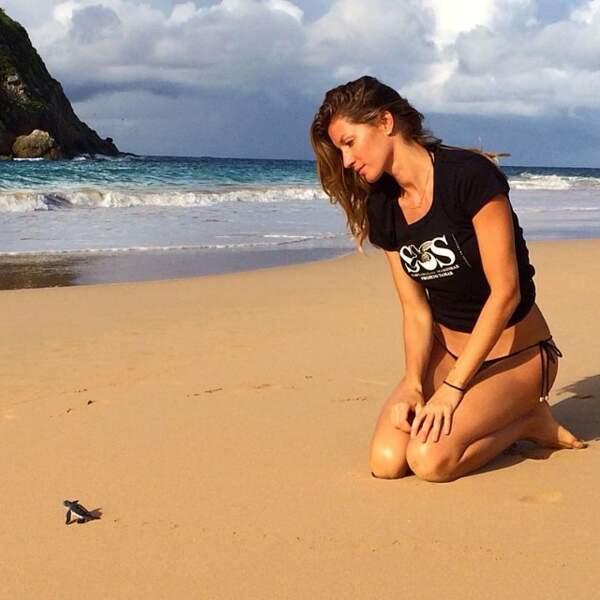Elle est aussi tombée en admiration devant cette petite tortue.