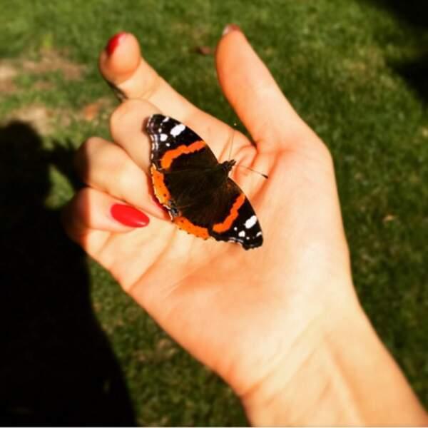 ... Et recueille des papillons.