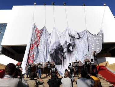 DiCaprio, Audrey Tautou, Le Grand Journal... Le Festival de Cannes vu par les stars