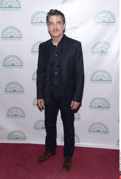 Peter Gallagher a joué des rôles récurrents dans Covert Affairs et New York, unité spéciale