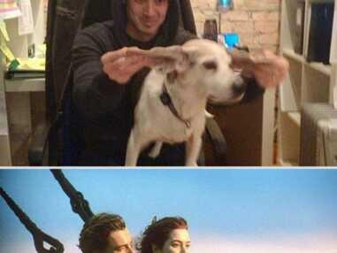 Les célèbres scènes d'amour reproduites par un patron et son chien