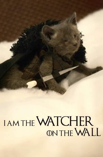 Dans la Guarde de Nuit, il défend le Mur avec un cure-dents