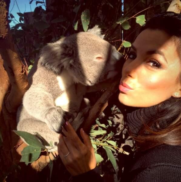 Elle adore les koalas ! Et il le lui rendent bien.
