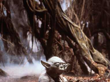 Yoda, le personnage de Star Wars préféré des internautes de Télé Loisirs !