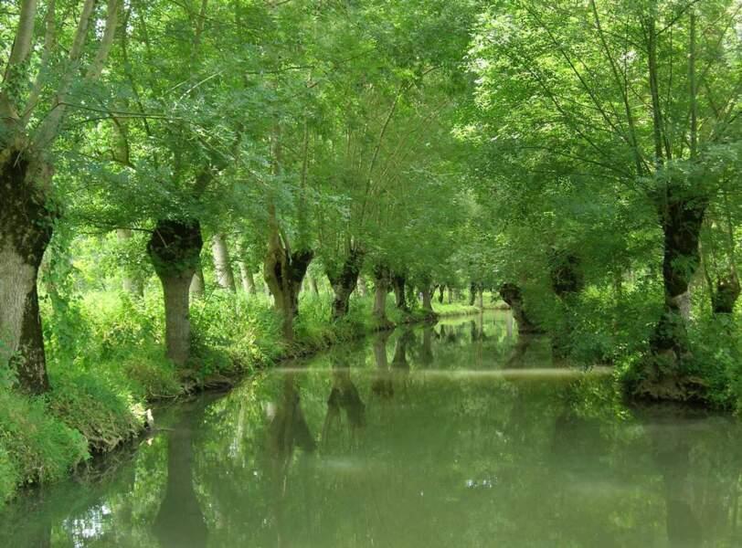 ... et ont fait un petit tour en Poitou-Charentes. La chance !
