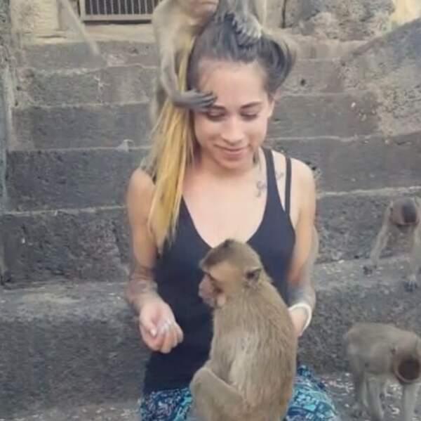 ... rencontre avec des singes joueurs à Ayutthaya...