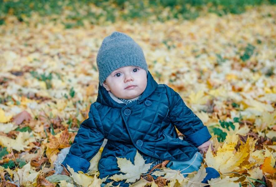 Pour Oscar, automne rime avec bain de feuilles mortes