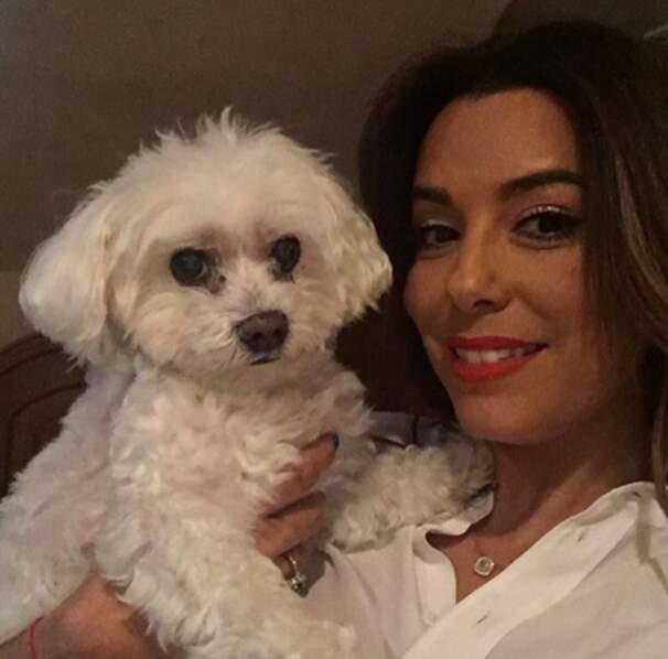 Et selfie canin pour Eva Longoria.