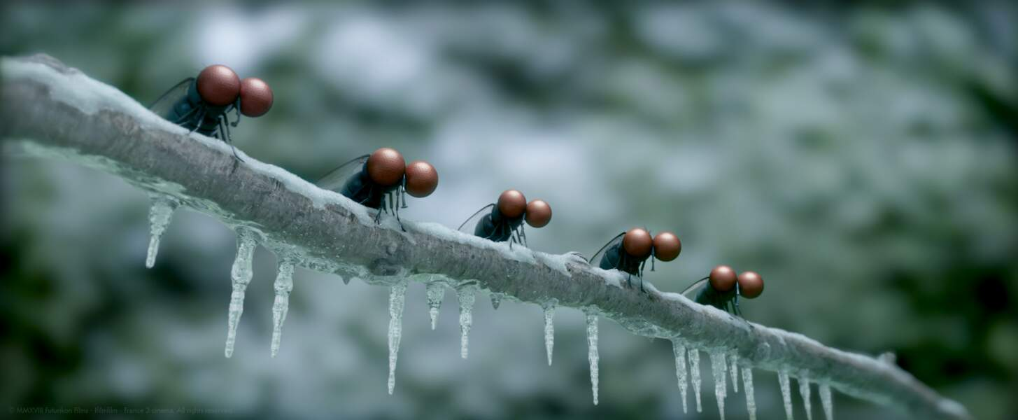 … en plein hiver