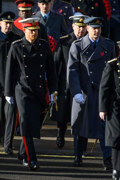 Les princes William et Harry arrivent à la cérémonie en mémoire de l'Armistice du 11 novembre 2018