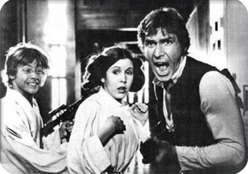 Dure de la feuille Princesse Leia ?