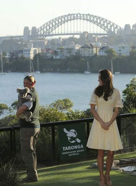 Mais qu'est-ce qu'il y a de plus mignon qu'un Royal Baby ? Un koala baby !