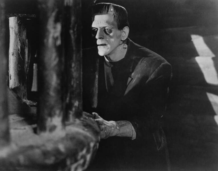 Le monstre est alors incarné par l'acteur britannique Boris Karloff