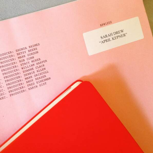Sarah Drew a bien reçu son script !