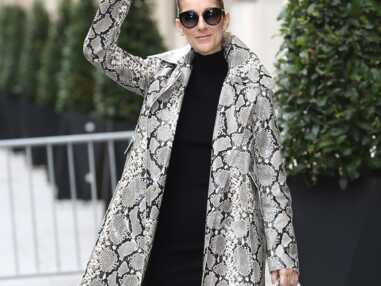 Céline Dion fait son show parisien ! (11 PHOTOS)