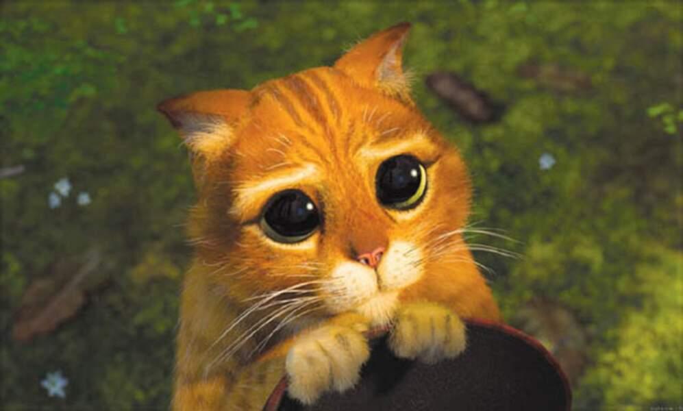 Le Chat Potté : Son arme de destruction massive ? Ses grands yeux de petit chat à qui on veut donner des croquettes