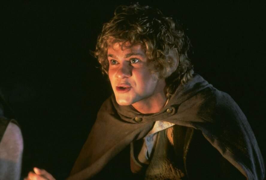 Que devient Dominic Monaghan, qui joue Merry ?