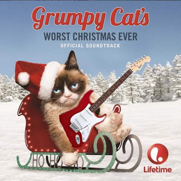 Grumpy Cat a même son propre film