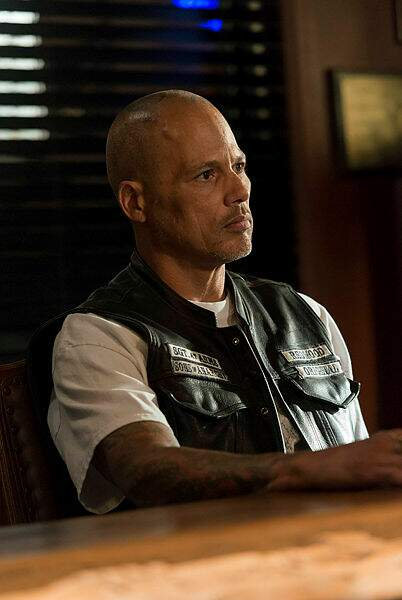 David Labrava (Happy) a multiplié les apparitions...