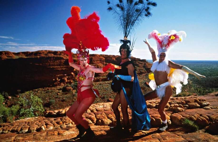 Toutes plumes dehors, les trois amis veulent faire vibrer l'Australie !