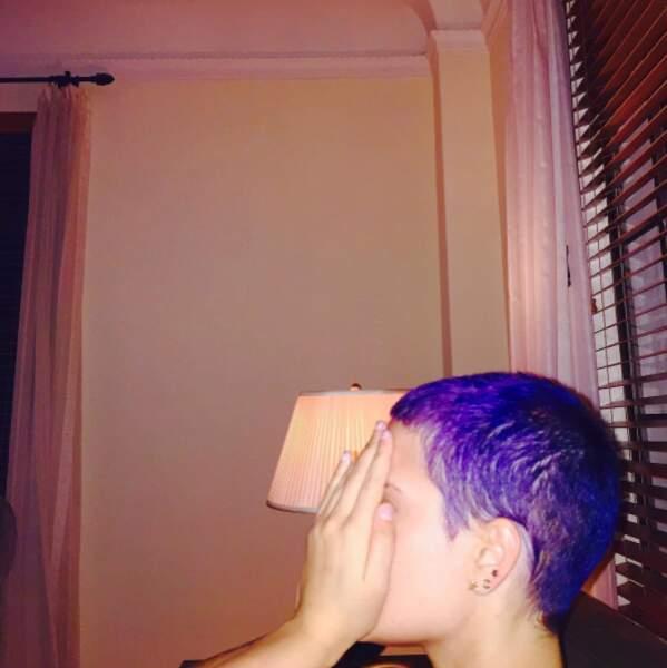 Point cheveux : la chanteuse Halsey a viré du côté violet de la force.
