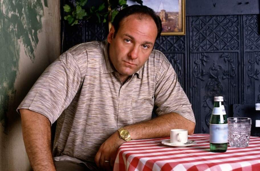 Tony Soprano dans Les Soprano
